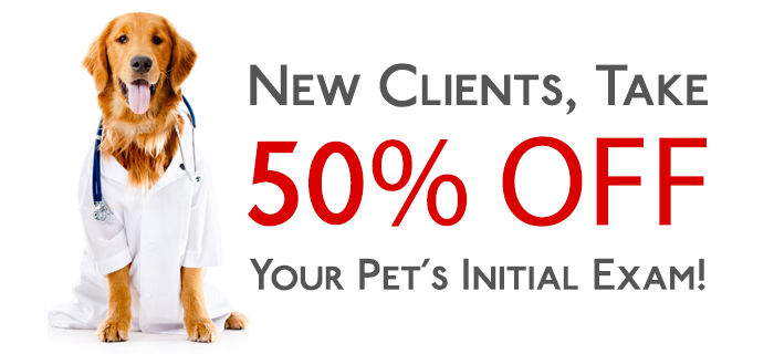 Take 50% Off Your Pet's Initial Veterinary Exam