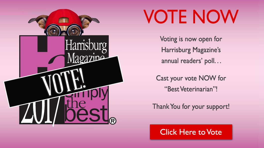 "Vote for ""Simply The Best"" Veterinarian!"