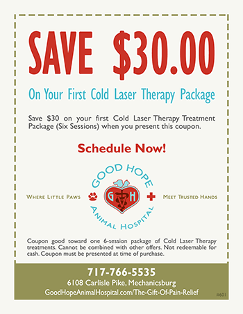 Coupon for Cold Laser Therapy for Pets