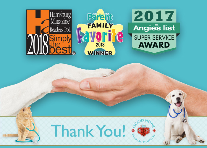"Good Hope Animal Hospital Recognized as ""Simply The Best"" Veterinarian"